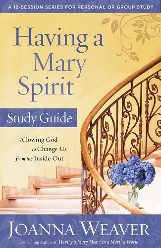 Having a Mary Spirit Study Guide-325